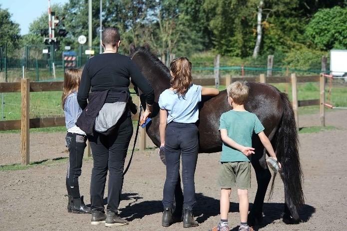 coaching met pony's