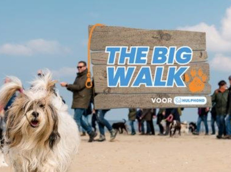 the-big-walk